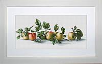 B2265 Акварель Яблоки, художник Е.Базанова. Luca-S. Набор для вышивания нитками