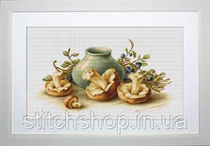 B2247 Натюрморт с грибами. Luca-S. Набор для вышивания нитками