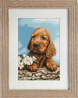 B333 Ожидающая собачка. Luca-S. Набор для вышивания нитками