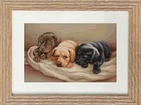 B434 Три собачки. Luca-S. Набор для вышивания нитками