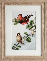 B216 Птички. Luca-S. Набор для вышивания нитками