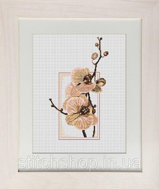 B288 Орхидеи. Luca-S. Набор для вышивания нитками