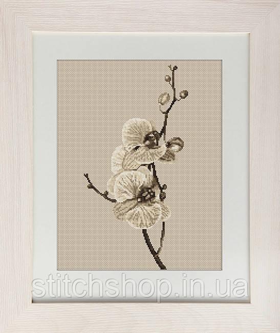 B291 Орхидеи. Luca-S. Набор для вышивания нитками