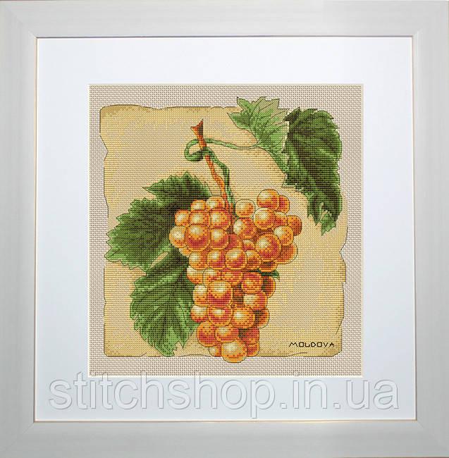 B296 Виноград. Luca-S. Набор для вышивания нитками