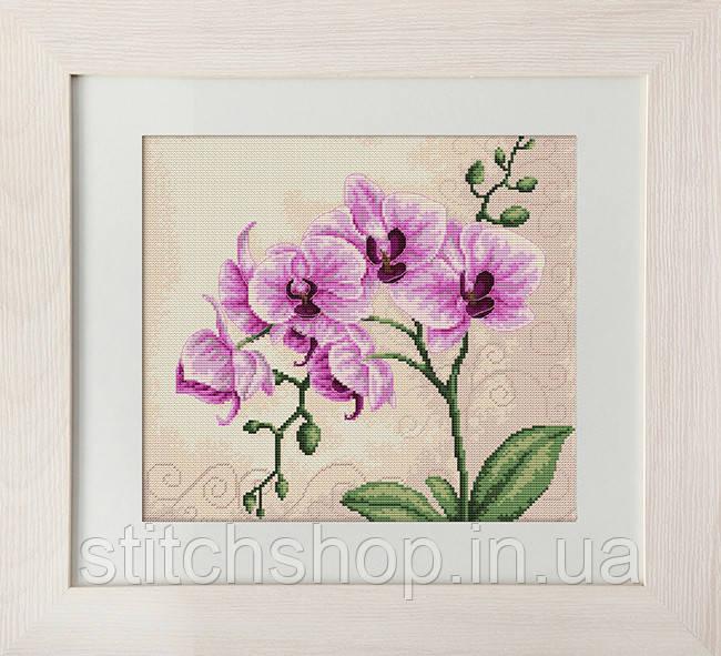 B2227 Орхидеи. Luca-S. Набор для вышивания нитками
