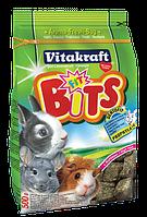 Лакомство - заточка Vitakraft  Bits для зубов грызунов 500 г (25782)