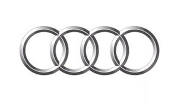 Накладки на пороги в салон для Audi