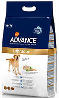 Корм для собак породы лабрадор ретривер Advance Labrador Retriever