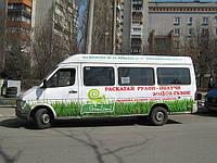 Реклама на маршрутках в Запорожье, фото 1