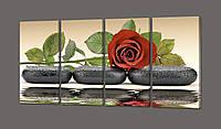 Роза на черных камнях 74* 35 см