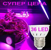 Светодиодная фито лампа для вазонов, фитолампа 36 led