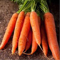 """Морковь """"Каротан"""""""