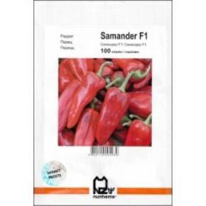 Семена перца Самандер F1 (Nunhems/АГРОПАК+) 50 семян — ранний(55-65 дн), конической формы, красный, сладкий, фото 2