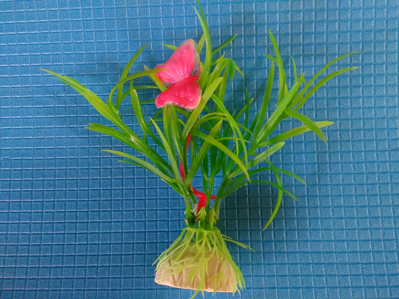 """Растение серии """"Е"""" 5 - 10см"""