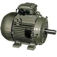 Синхронные электродвигатели с  возбуждением от постоянных  магнитов