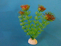 """Растение серии """"Sunny"""" AP-013С, 10см"""