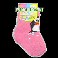 Детские махровые носки р. 92-98,  95% хлопок 5% эластен ТМ Biedronka 3320 Розовый