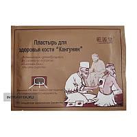 Пластырь от артрита для здоровья кости Кангунин