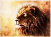Набор алмазной вышивки Огненный лев 40 х 30 см (арт. FS347)