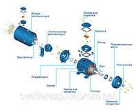Электродвигатели WEG с принудительной вентиляцией промышленного назначения.