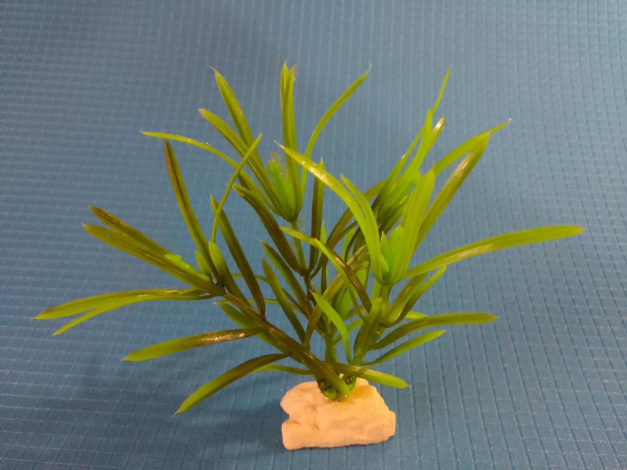 """Растение серии """"Sunny"""" AP-113С, 10см"""