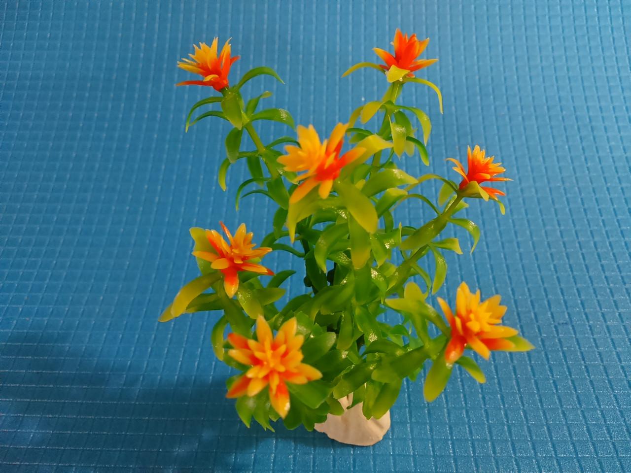 """Растение серии """"Sunny"""" AP-029Е, 10см"""