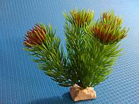 """Растение серии """"Sunny"""" AP- 005С, 10см"""