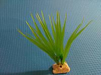 """Растение серии """"Sunny"""" AP- 041G, 10см"""