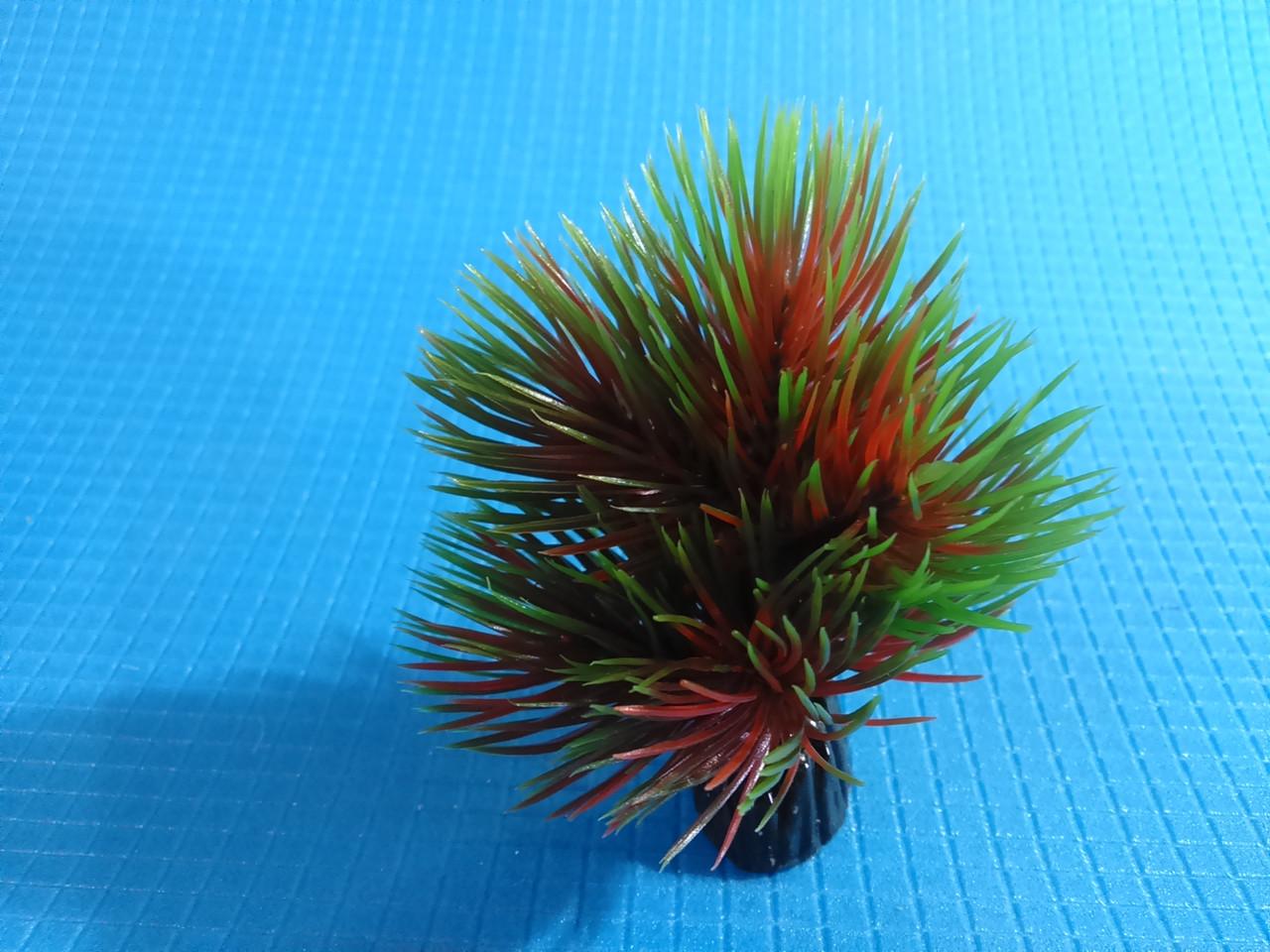 """Растение серии """"Sunny"""" AP-092A, 8см"""