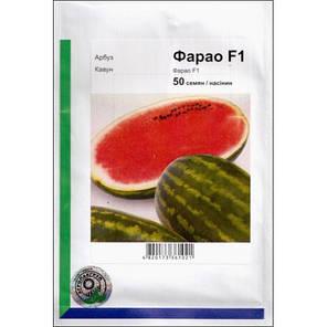 Семена арбуза Фарао F1 (Syngenta/ АГРОПАК+) 50 сем — (65-70 дн), удлиненной формы,СЛАДКИЙ! вес 15-18 (до 35)кг, фото 2