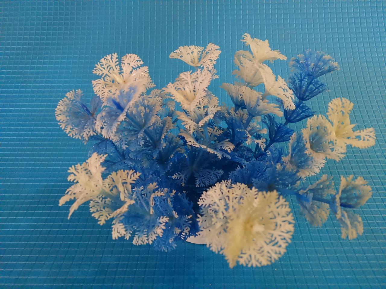 Растение Н- 082Р2, 10см