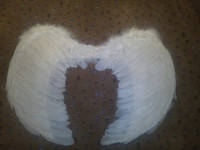 Крылья Ангела перьевые 54*40