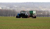 Добрива для пшениці