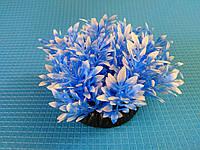 """Растение серии """"Sunny"""" Q- 044P1, 10см"""