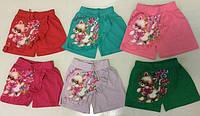 Модные шорты-юбка с принтом 6-8 лет