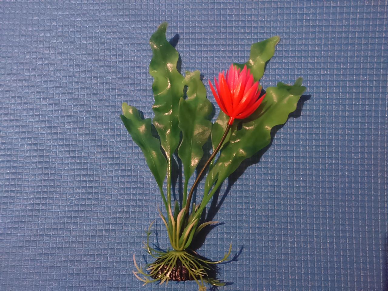"""Растение серии """"Sunny"""" AP- 025С, 20см"""