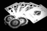 В каком государстве можно победить в выборах мэра, выиграв в покер?