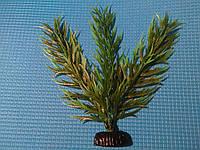"""Растение серии """"Sunny"""" AP- 115C, 20см"""
