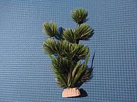 """Растение серии """"Sunny"""" AP- 092C, 20см"""