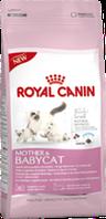 Корм сухой Роял Канин для беременных кошек и котят Royal Canin  Mother & Babycat 4 кг
