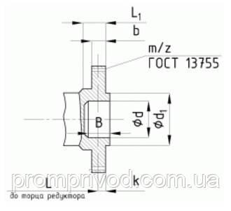 Размеры концов тихоходных валов в виде зубчатой полумуфты редуктора РМ-1000