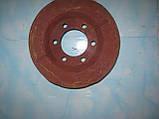 Шестерня транспортёра копателя (две половинки) Krukowiak. Шестерня привода транспортера. Приводная шестерня., фото 3
