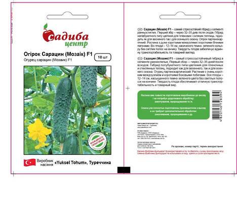 Семена огурца Сарацин F1 (Мозаик) (Yuksel Seeds, САДЫБА ЦЕНТР), 10 семян — ранний гибрид, партенокарпик , фото 2