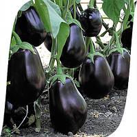 Семена баклажана Клоринда F1 (Clorinda F1). Упаковка 1000 семян