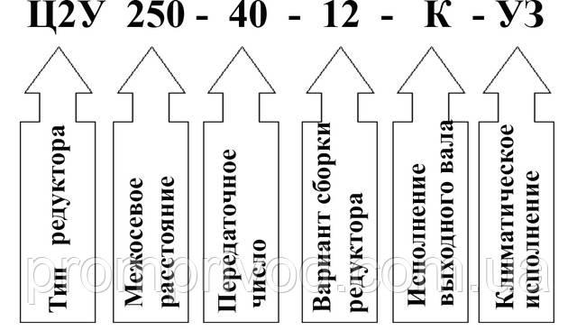 Пример условного обозначения редуктора 1Ц2У-250