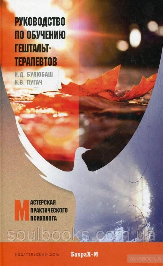 Руководство по обучению гештальт-терапевтов. Ирина Булюбаш