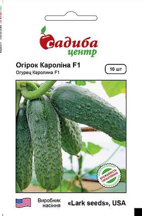 Каролина F1 огурец (Lark Seeds), 10 семян — ранний гибрид (45 дней), партенокарпик (до 2020), фото 2