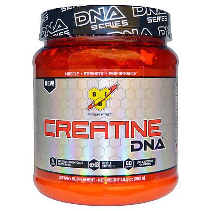 Creatine DNA BSN 309 g , фото 2