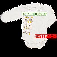 Детский боди с длинным рукавом р. 56 демисезонный ткань ИНТЕРЛОК 100% хлопок ТМ Алекс 3149 Зеленый