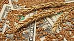 На закупку зерна «Аграрному фонду» выделили 1 млрд гривен